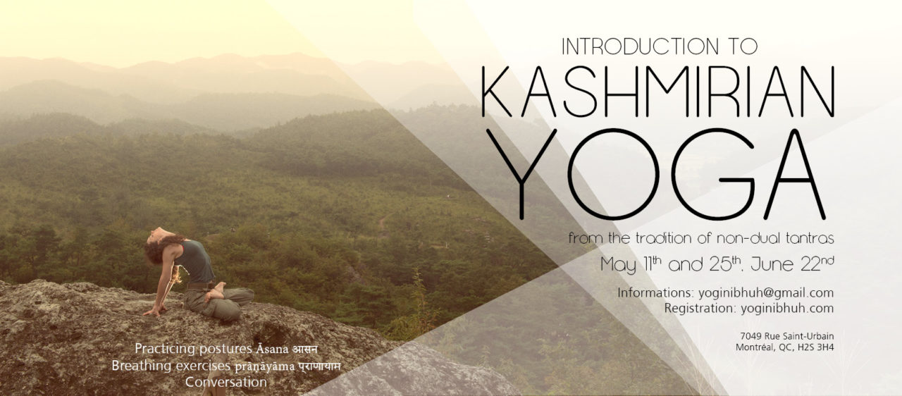 Introduction to kashmirian yoga