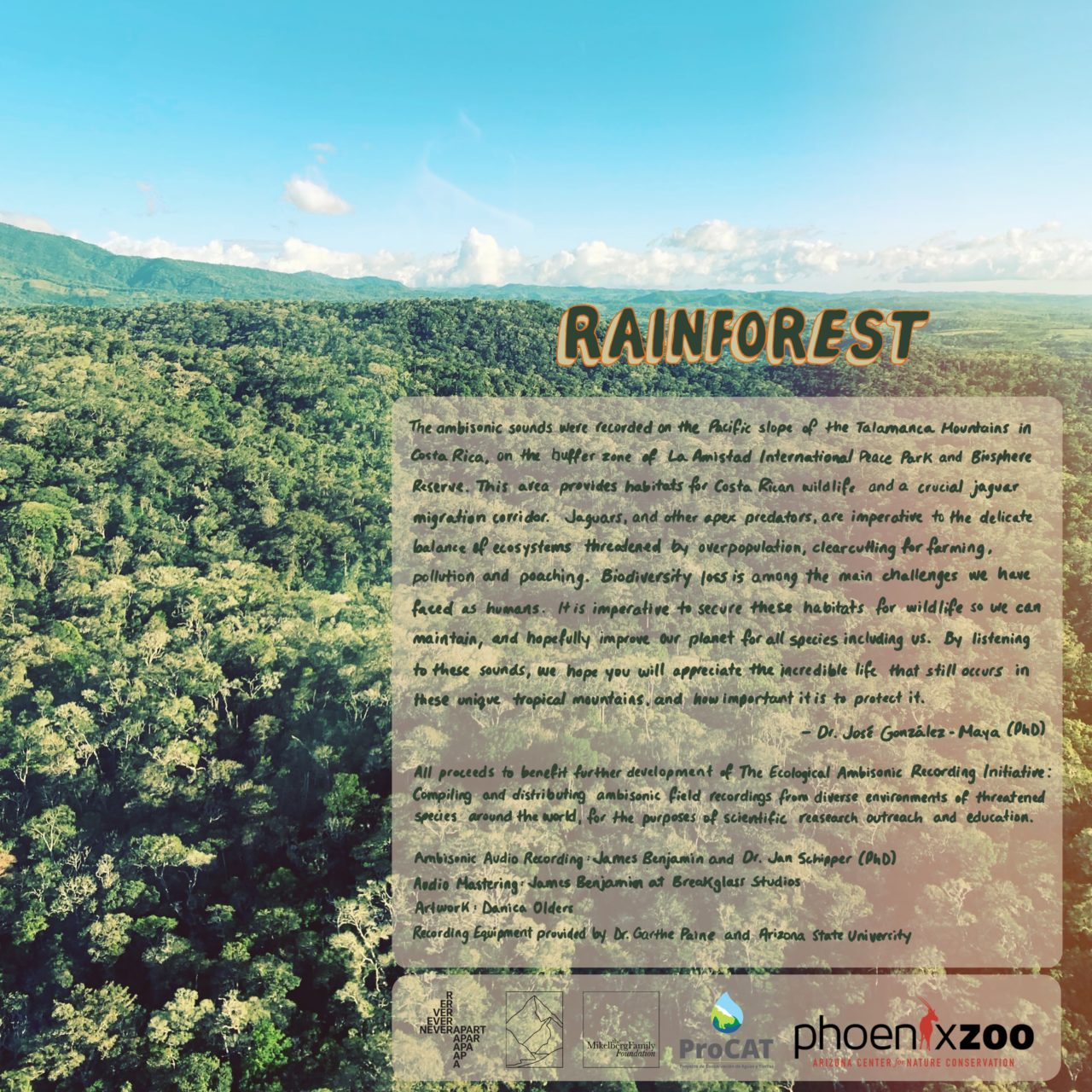 Interview: Ecological Ambisonic Recordings from the Rainforest